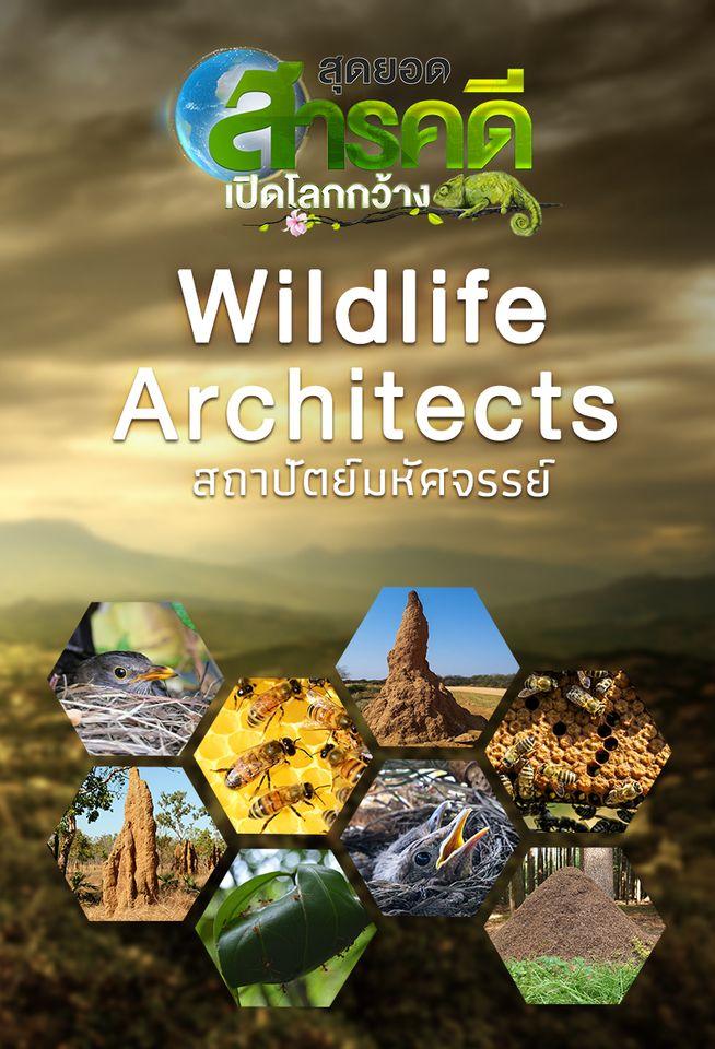 Wildlife Architects