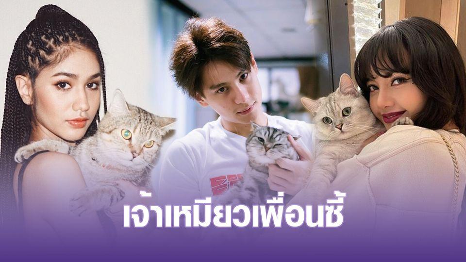 คลังภาพซุปตาร์ : รวมโมเมนต์คลั่งรัก 10 เหล่าคนดังชาวทาสแมว