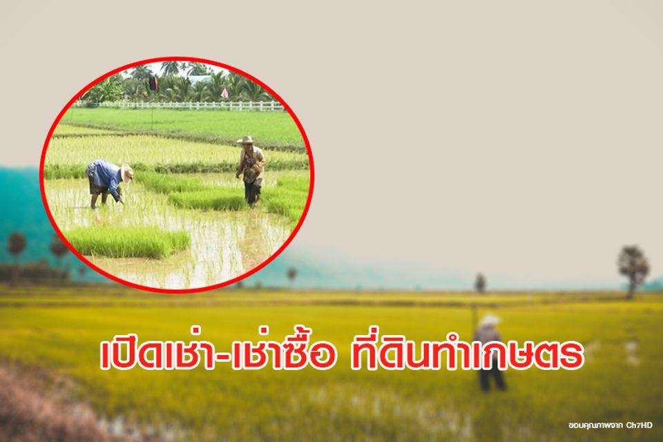 ข่าวดี ! ครม.ให้ กรมชลฯ เปิดเช่า-เช่าซื้อ ที่ดินทำเกษตร ใครบ้างเข้าหลักเกณฑ์