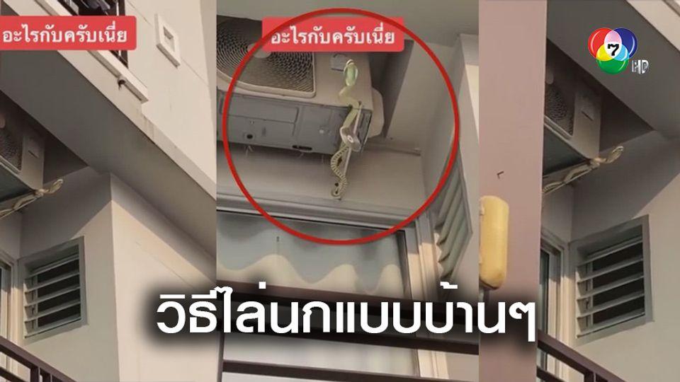 แทบหงาย! คนข้างห้องเลี้ยงงูไล่นก ที่แท้แค่ของปลอม