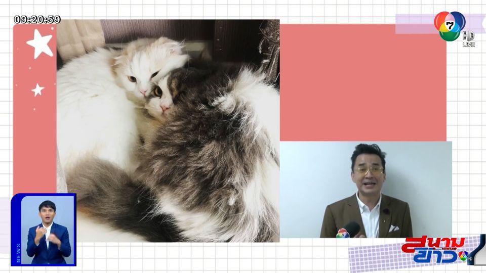 นีโน่ เมทนี เผยความน่ารักของน้องหมา-น้องแมวที่บ้าน อัปเดตอาการป่วยหอบกำเริบ