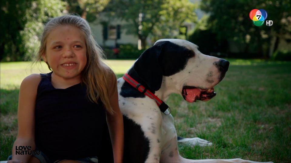 สารคดี Dogs with Extraordinary Jobs ฮีโร่ 4 ขา มะหมาคู่ใจ ตอน 1 (1/4)