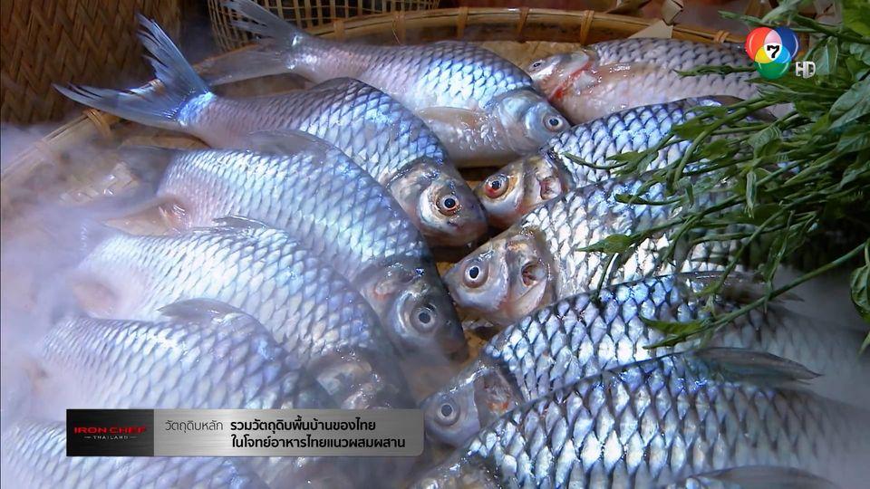 Iron Chef Thailand เชฟกระทะเหล็ก 16 ต.ค.64 รวมวัตถุดิบพื้นบ้านของไทยในโจทย์อาหารไทยแนวผสมผสาน