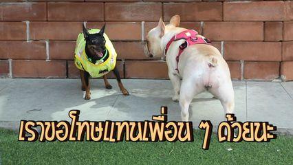 Special Uncut ชายกล้ามปูกับหมูช็อคบอล EP.7 | มะรุมมะตุ้มรุมรักช็อคบอล