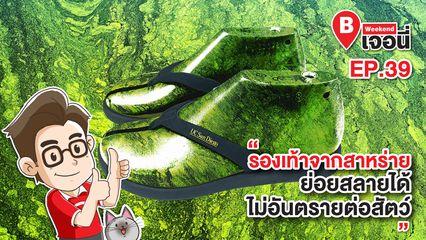 EP.39 Weekend เจอนี่ | รองเท้าจากสาหร่าย ย่อยสลายได้ ไม่อันตรายต่อสัตว์