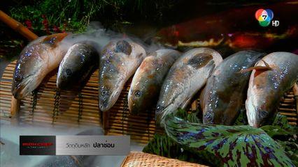 Iron Chef Thailand เชฟกระทะเหล็ก 5 มิ.ย.64 ปลาช่อน