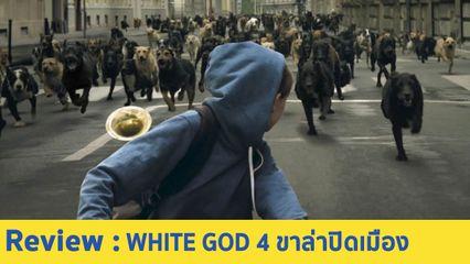 รีวิวหนัง White God สี่ขาล่าปิดเมือง(2014) หนังพล็อตแปลก ที่มาพร้อมการตั้งคำถามกับสังคมได้อย่างแยบยล