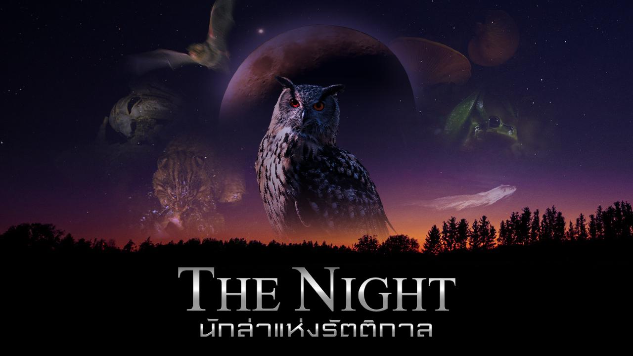 ดูสารคดี The Night นักล่าแห่งรัตติกาล